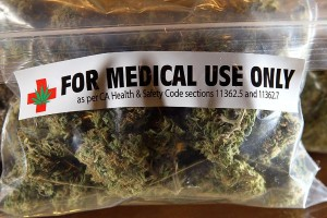 Medical Marijuana Growers Get Jail Time
